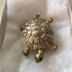 Silver turtle with green eyes.